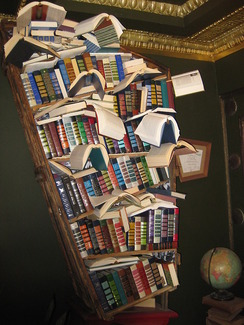Bookshelf at the Last Bookstore